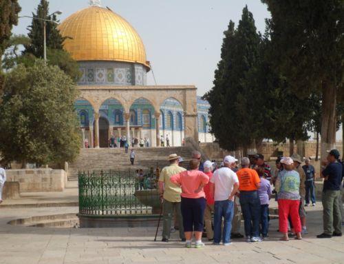 Jongerenreis 18+ Israël
