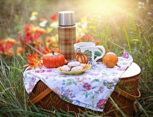 Picknick voor jonge gezinnen